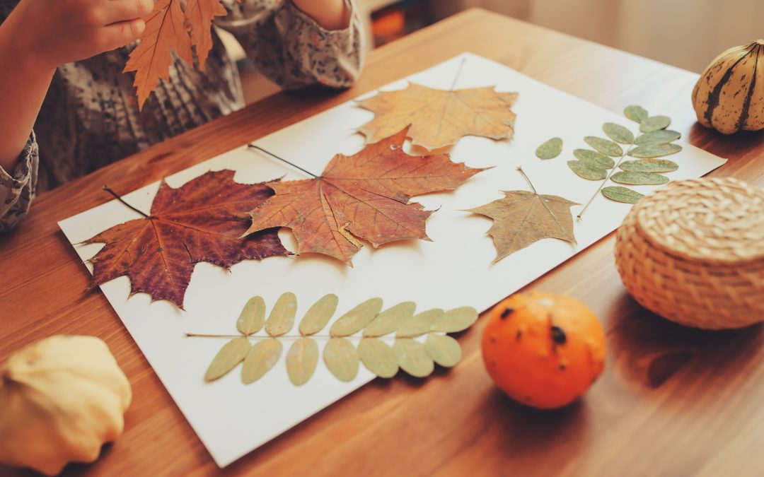 4 Unique Fall Activities to Try with Your Kids